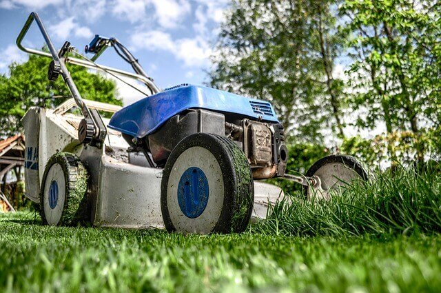 Lawn Project